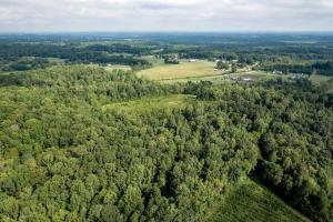 Rural Acreage with Timber and Field in Rowan, NC (10 of 34)