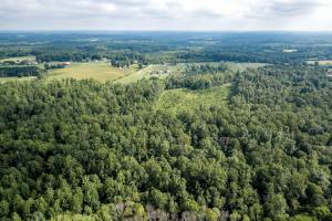 Rural Acreage with Timber and Field in Rowan, NC (9 of 34)