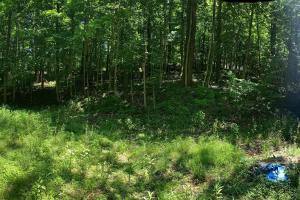 Prime Homesite Near Bolander Woods! in Marion County, IN (2 of 6)