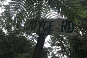 Joyce Road runs through the middle of the property. (4 of 7)
