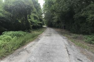 This is a view of Joyce Road looking North from Cummings Road. (5 of 7)