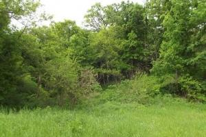 5 +/- Acres recreational property in Grant County, WI (3 of 5)