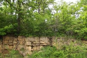 5 +/- Acres recreational property in Grant County, WI (2 of 5)