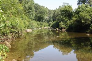Eightmile Creek Property - Cullman County AL