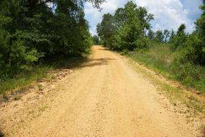 Hartley Road Timber, Hunting, & Pasture - Tract B in Perry, AL (7 of 7)
