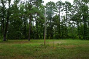 The Boligee Tombigbee River Timber & Hunting Investment in Greene, AL (17 of 49)