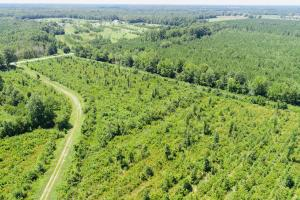 Land for Sale in North Carolina