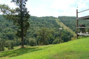 Recreational land and home on 40 acres in Cleburne, AR (26 of 42)
