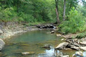 Recreational land and home on 40 acres in Cleburne, AR (12 of 42)