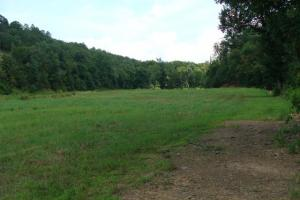 Recreational land and home on 40 acres in Cleburne, AR (8 of 42)