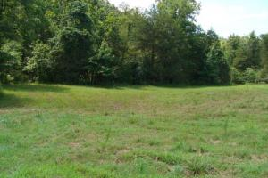 Recreational land and home on 40 acres in Cleburne, AR (11 of 42)