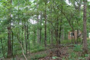 Recreational land and home on 40 acres in Cleburne, AR (19 of 42)