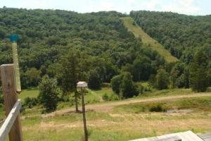 Recreational land and home on 40 acres in Cleburne, AR (30 of 42)