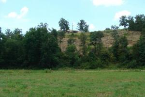 Recreational land and home on 40 acres in Cleburne, AR (13 of 42)