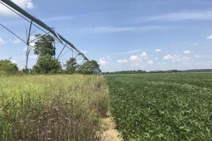 This irrigation rig is located near Hwy 45-Alt (27 of 27)