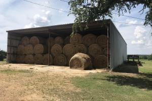 A 50' x 75' hay shed is located at headquarters.  (19 of 27)
