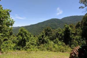 Lamplighter - plenty of water, sunlight, & views! - Madison County, NC