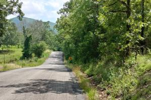 6 Wooded Acres with Utilities Close to Hot Springs in Garland, AR (1 of 19)