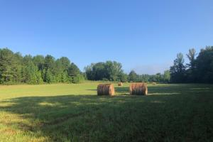 Prentiss County Pasture and Hunting - Prentiss County MS