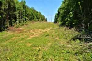Alta Recreation and Timber Investment Property in Fayette, AL (12 of 18)