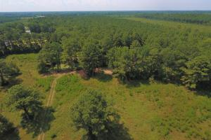 264 Timber Tract in Greene, NC (3 of 4)