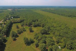 264 Timber Tract in Greene, NC (4 of 4)