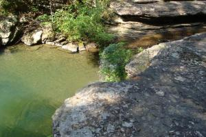 160 Acre Ozark Mountain Waterfall Hunting Tract in Stone, AR (8 of 49)