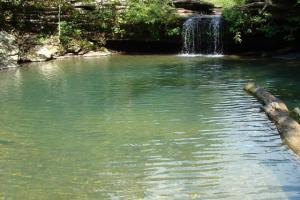160 Acre Ozark Mountain Waterfall Hunting Tract in Stone, AR (5 of 49)