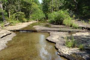 160 Acre Ozark Mountain Waterfall Hunting Tract in Stone, AR (13 of 49)
