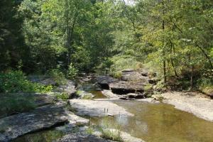 160 Acre Ozark Mountain Waterfall Hunting Tract in Stone, AR (11 of 49)