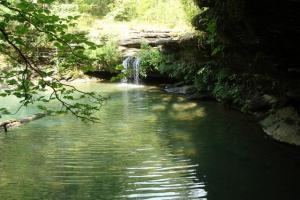 160 Acre Ozark Mountain Waterfall Hunting Tract in Stone, AR (7 of 49)