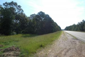 Arnold Tract-Fayette in Jefferson, MS (4 of 27)
