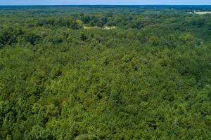 Beautiful tract surrounded by breathtaking views on 36 acres in Clarksville.  (9 of 11)