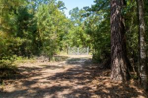 Gated entrance on 36 acre tract in Clarksville.  (6 of 11)