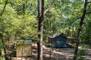 Perfect seclusion on 36 acres in Red River County.  (2 of 11)