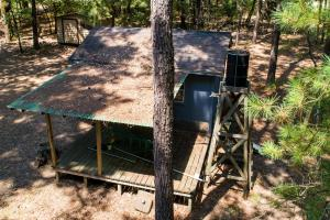 36 acre Timber Tract with Hunting Cabin in Red River County  - Red River County, TX