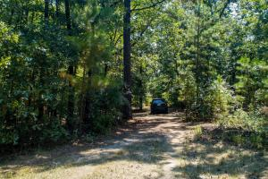 Private drive on 36 acres near the Red River.  (5 of 11)