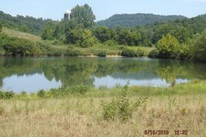 Residence Quality Cropland Recreational Lake  in Knox, KY (5 of 51)