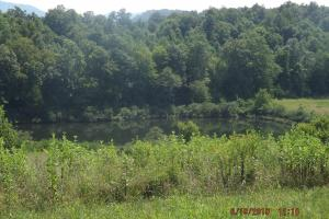 Residence Quality Cropland Recreational Lake  in Knox, KY (10 of 51)