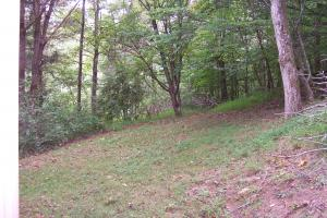 Hill and wooded portion of property (45 of 45)