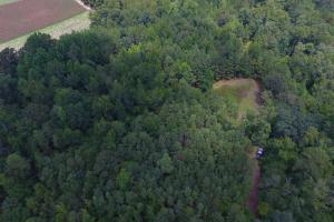 Fayetteville 10+/- Ac Homestead in Cumberland, NC (7 of 9)