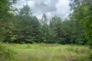 Fayetteville 10+/- Ac Homestead in Cumberland, NC (9 of 9)