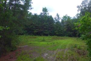 Fayetteville 10+/- Ac Homestead in Cumberland, NC (4 of 9)