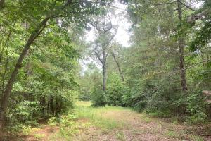 Fayetteville 10+/- Ac Homestead in Cumberland, NC (1 of 9)