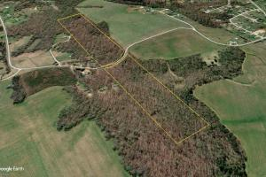 Rural Acreage With Timber And Homesites