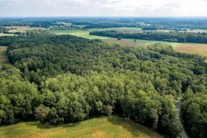 Rural Acreage With Timber And Homesites  - Rowan County, NC