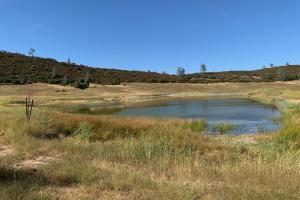 Hunting and Recreational Land - Lake County CA