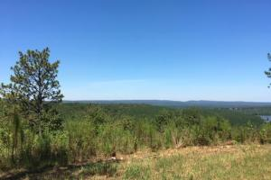 Columbiana Mountain Top Homesites & Timber in Shelby, AL (15 of 37)