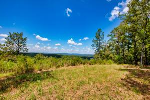 Columbiana Mountain Top Homesites & Timber in Shelby, AL (2 of 37)