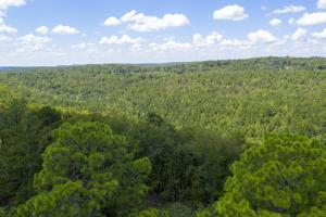 Columbiana Mountain Top Homesites & Timber in Shelby, AL (7 of 37)
